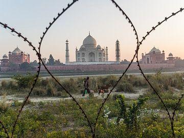 Een andere kijk op de Taj Mahal van Shanti Hesse