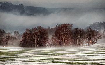 Mistig landschap van Gabsor Fotografie