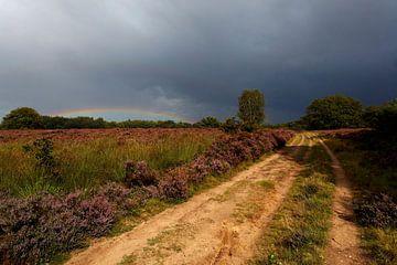 Regenboog en Heide  van Ron Hoefs