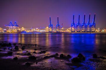Blue Port van