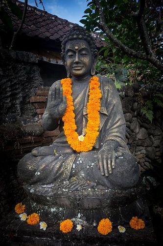 Boeddha hand van