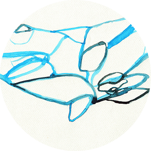 Minimalistische walvis van Celeste Groenewald