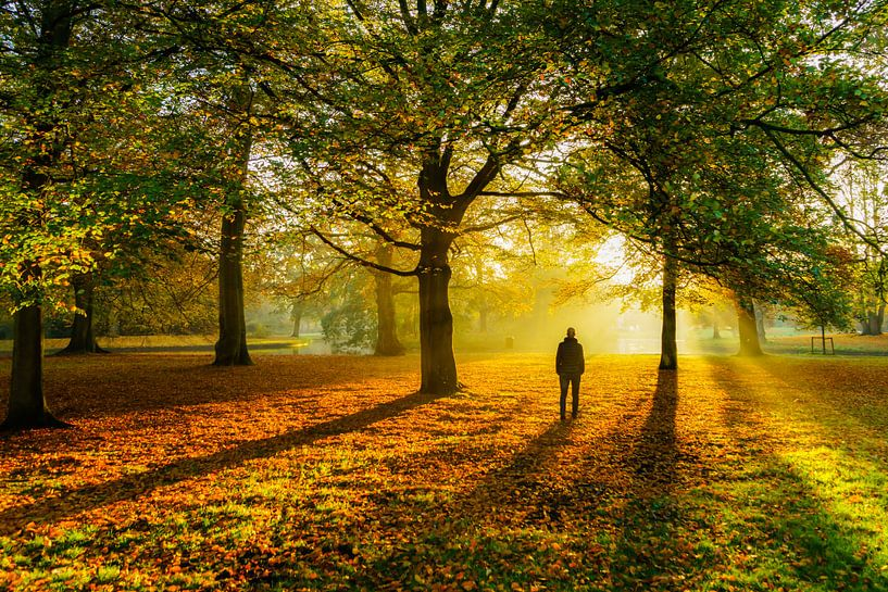 Herfstkleuren van Jeroen Kleiberg