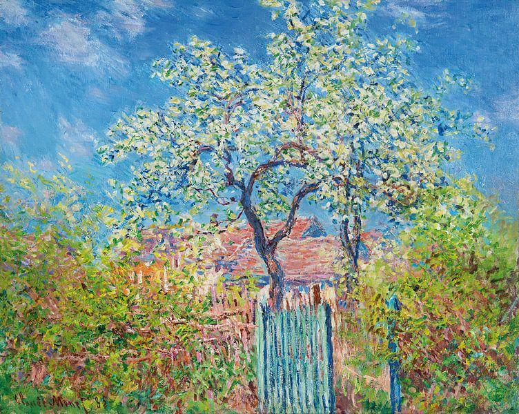 Blühender Birnbaum, Claude Monet von Meesterlijcke Meesters