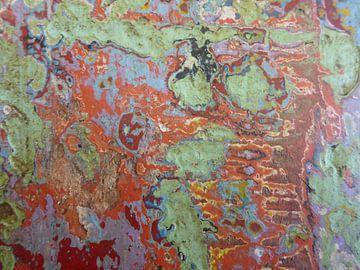 Kleurenspel in hout von Daniël Majoor