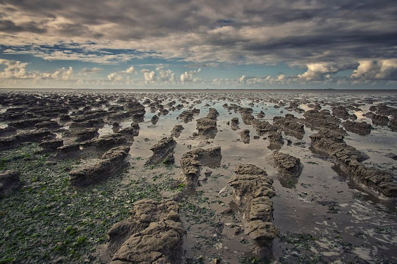 De kleiende zee van Remco de Vries