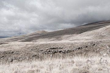 Wandelen door de bergen | Armenië van Photolovers reisfotografie