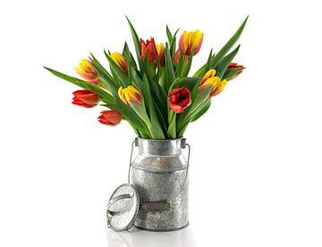 rode en gele tulpen in  metalen emmer