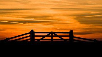 Sundown van Harmen van Twillert