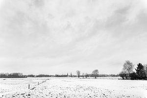 Zwart wit landschap