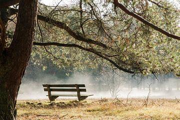 Bankje in de mist von Aukje Ploeg
