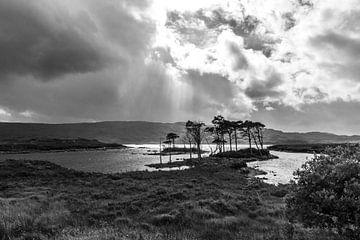 Donker Schotland von Annick Cornu