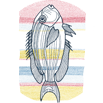 Stitches - Fish van > VrijFormaat <