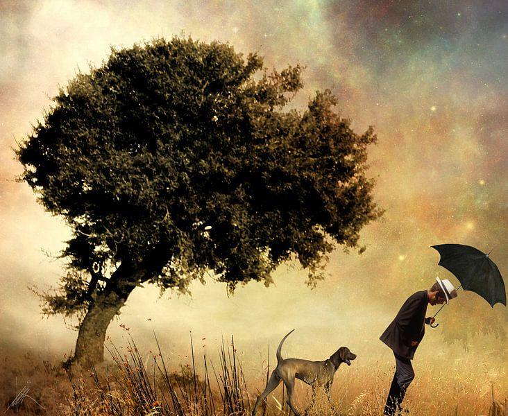 Gegen den Wind von Harald Fischer