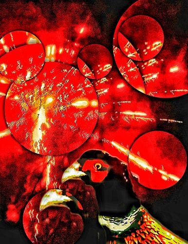 Fazant met vuurwerk en bubbels