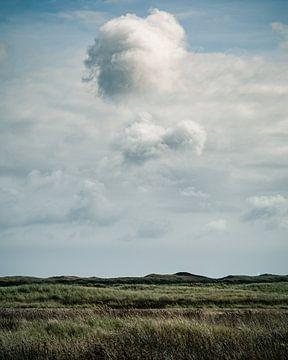Someday III van Frank Hoogeboom
