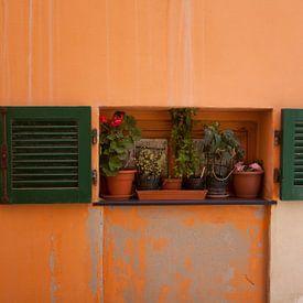 Stilleven in Alghero, Sardinië van Kees van Dun