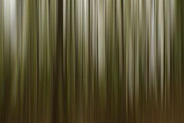 Wood... van