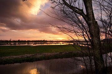 Aan de Wolddijk in Groningen sur Ronnie Schuringa