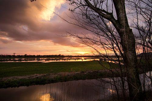 Aan de Wolddijk in Groningen