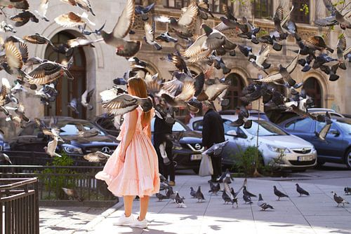 The Girl with Doves van Dana Marin