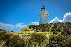 Vuurtoren bij Waipapa Point, Southland, Nieuw Zeeland van