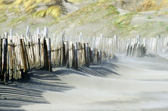 Strand IJmuiden van Watze D. de Haan