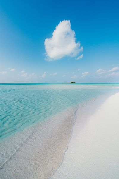 Malediven 10 von Andy Troy