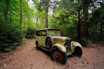 Auto im Wald von michel van bijsterveld