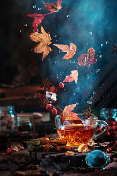 Briar thee met de herfst werveling, Dina Belenko van 1x
