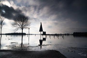 Überschwemmtes Land bei Maurik in schwarz-weiß von Tina Linssen