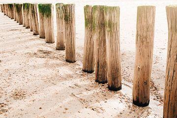 Schaduwen op het zand van Djuli Bravenboer