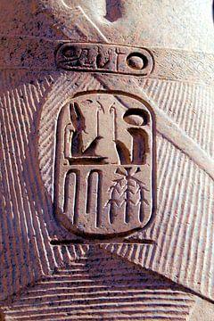 Egyptische Pharoah gesneden Cartouche van Brian Raggatt