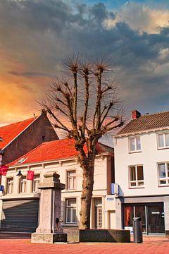 Des jours de printemps chauds sur J..M de Jong-Jansen