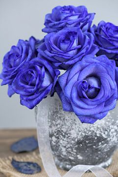 Blue roses in a vase. sur Lorena Cirstea