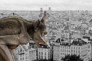 Waker van Parijs van Mark Koster