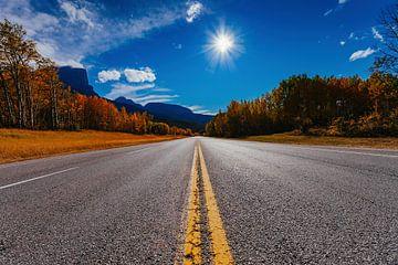 Jasper Road von Calgary nach Vancouver von Bibi Veth