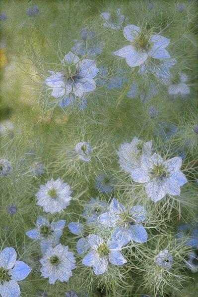 Veldbloemen van Diana Mets