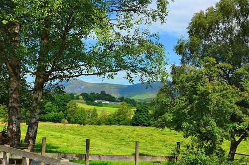 The Naddle Valley in the Lake District