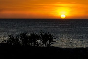 Zonsondergang op Curaçao van René Rietbroek