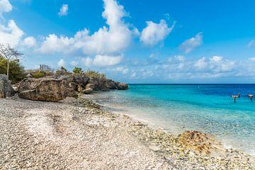 Directors Bay - Strand in Curacao van Joke Van Eeghem
