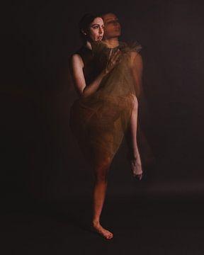 Ballerina in Bewegung 02 von FotoDennis.com