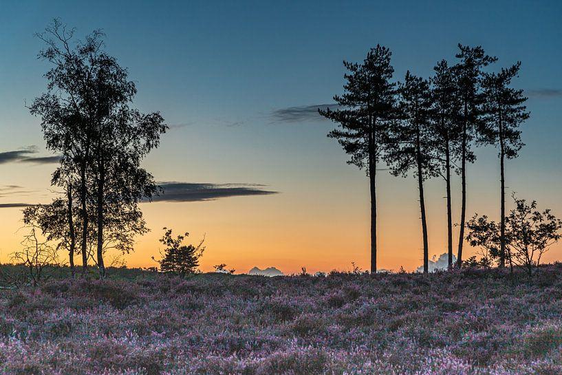 Zonsondergang bij natuurgebied Den Treek in Leusden van Karin Riethoven