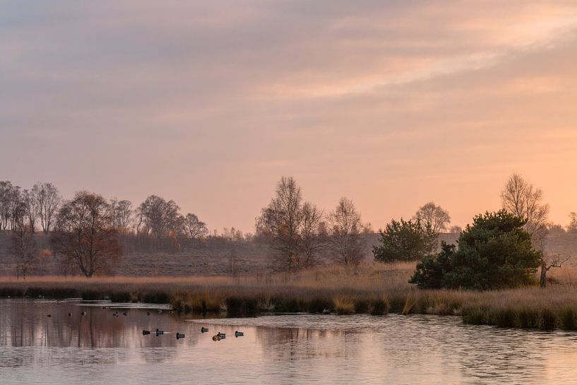 Sunrise Mood van William Mevissen