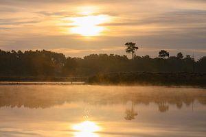 reflet du lever du soleil sur Tania Perneel