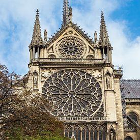 Gezicht op de kathedraal Notre-Dame in Parijs, Frankrijk van Rico Ködder