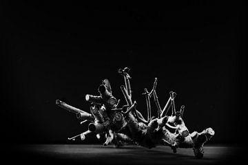 Tanzende Äste von Jean Arntz