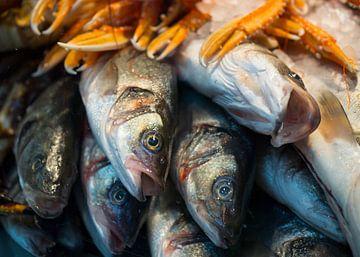Verse vis in de Torvehallerne in Kopenhagen van Teun Janssen