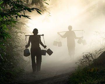 Mist in de vroege ochtend van Anges van der Logt