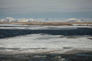 Winters landschap van